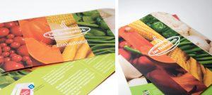 Knorr Kampagne mit Presse-Medien von deerns und jungs Agentur für Corporate Design Köln