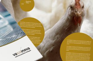 Gestaltung Image-Broschüre von deerns und jungs Werbeagentur Köln