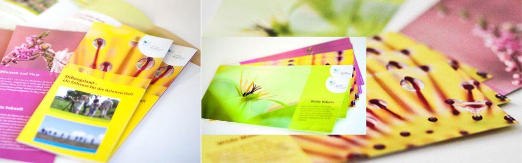 Flyer Design für Naturschutz