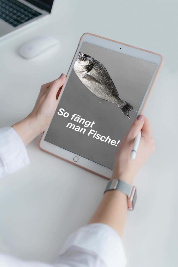 Suchmaschinenoptimierung oder SEO von Design Agentur Hamburg